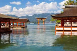 宮島 厳島神社の写真素材 [FYI01716663]