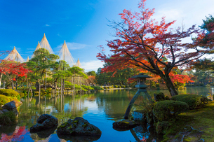 秋の兼六園 霞ヶ池と紅葉の写真素材 [FYI01716711]