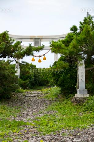 舳倉島 奥津比め神社の写真素材 [FYI01716756]