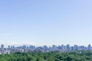 都会の森の写真素材 [FYI01716867]