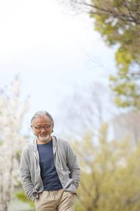 公園を散歩するシニア男性の写真素材 [FYI01716999]