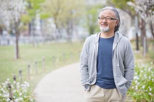 公園を散歩するシニア男性の写真素材 [FYI01717023]