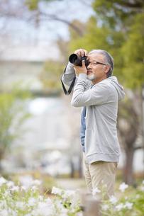写真を撮影するシニア男性の写真素材 [FYI01717033]