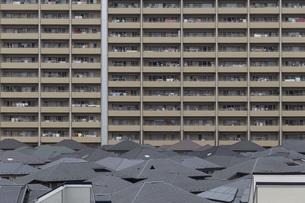 高層マンションと住宅街の風景の写真素材 [FYI01717143]