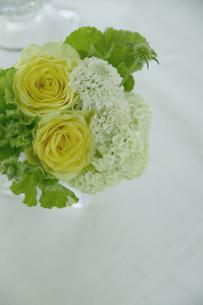 バラとスカピオーサのアレンジの写真素材 [FYI01717155]