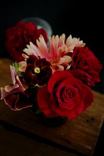 バラとガーベラとパンジーのアレンジの写真素材 [FYI01717196]