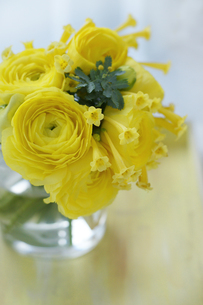 ラナンキュラスとミモザの黄色いアレンジの写真素材 [FYI01717212]