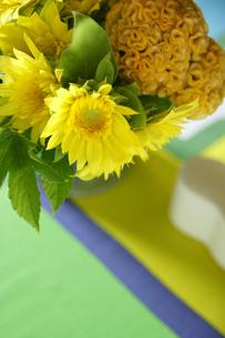 ヒマワリとケイトウの黄色いアレンジの写真素材 [FYI01717250]