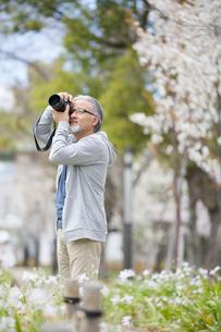 写真を撮影するシニア男性の写真素材 [FYI01717258]