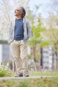 公園を散歩するシニア男性の写真素材 [FYI01717266]