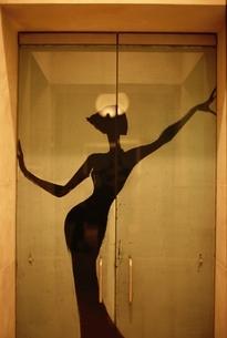 ドアに描かれた女性のシルエット パリ フランスの写真素材 [FYI01717278]