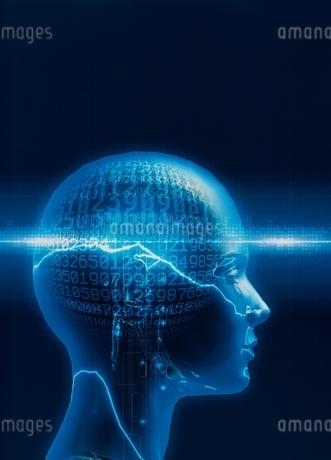 人体の頭脳のイメージ(青) CGのイラスト素材 [FYI01717415]