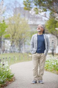 公園を散歩するシニア男性の写真素材 [FYI01717484]