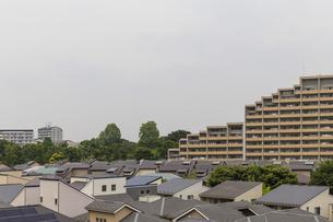 マンションと住宅街の風景の写真素材 [FYI01717601]