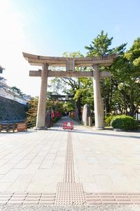 小倉 八坂神社の鳥居の写真素材 [FYI01717986]