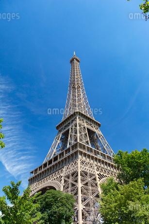 初夏の樹々とエッフェル塔の写真素材 [FYI01718157]