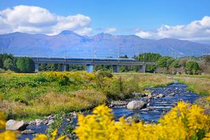 東北新幹線と那須岳と余笹川に咲くセイタカアワダチソウの写真素材 [FYI01718178]