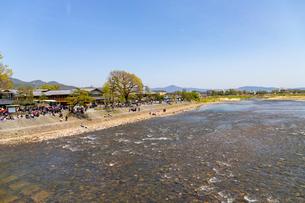 桂川の河川敷を訪れる観光客の写真素材 [FYI01718335]