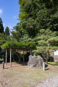 田川、貝化石地帯の大岩の写真素材 [FYI01718685]