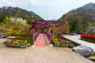 加賀温泉郷 山中温泉 あやとりはし入口の写真素材 [FYI01718754]