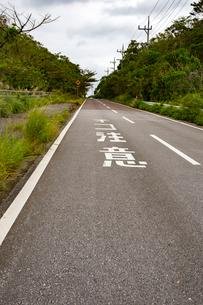 西表島,ネコ注意の道路の写真素材 [FYI01718926]