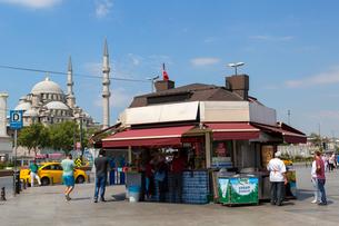旧市街、船着き場から望むニューモスクの写真素材 [FYI01719017]