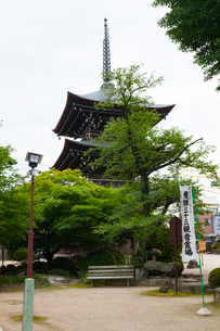 高山 飛騨国分,三重塔の写真素材 [FYI01719041]