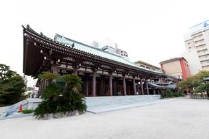 博多東長寺の本堂の写真素材 [FYI01719290]