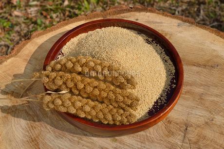 粟の殻をむいた実と穂の写真素材 [FYI01719419]