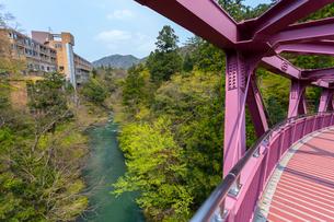 加賀温泉郷 山中温泉 あやとりはしから望む鶴仙渓の写真素材 [FYI01719451]