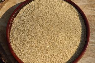 粟の殻をむいた実の写真素材 [FYI01719506]