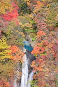 紅葉と駒止の滝の写真素材 [FYI01719528]