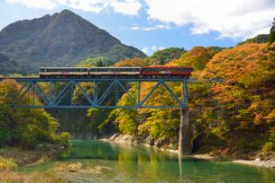 会津鉄道と大川と紅葉の写真素材 [FYI01719540]