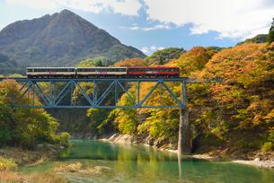 会津鉄道と大川と紅葉の写真素材 [FYI01719542]