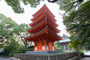 博多東長寺の五重塔の写真素材 [FYI01719548]