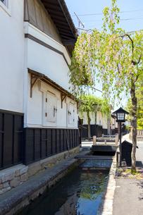 飛騨古川、瀬戸川と白壁土蔵街の写真素材 [FYI01719558]
