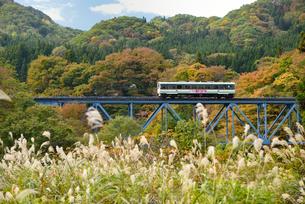 会津鉄道とススキと紅葉の写真素材 [FYI01719570]
