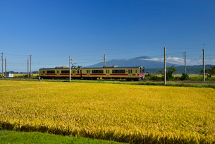 JR羽越本線と鳥海山と稲穂の写真素材 [FYI01719578]