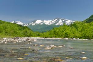 新緑の寒河江川と残雪の月山の写真素材 [FYI01719583]