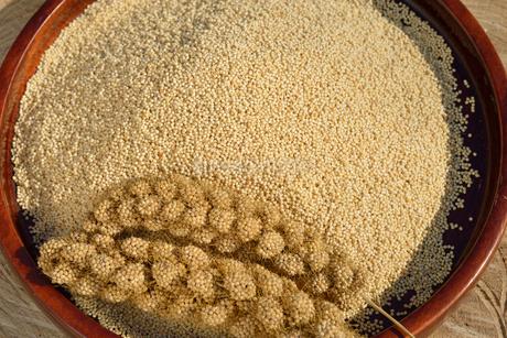 粟の殻をむいた実と穂の写真素材 [FYI01719585]