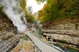 秋の小安峡と遊歩道の写真素材 [FYI01719615]