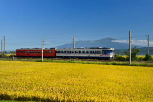 JR羽越本線と鳥海山と稲穂の写真素材 [FYI01719721]