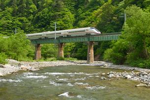 秋田新幹線(E3系)の写真素材 [FYI01719724]