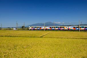 JR羽越本線快速きらきらうえつと鳥海山と稲穂の写真素材 [FYI01719758]