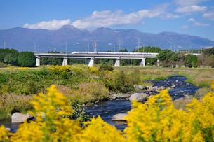 東北新幹線と那須岳と余笹川に咲くセイタカアワダチソウの写真素材 [FYI01719770]
