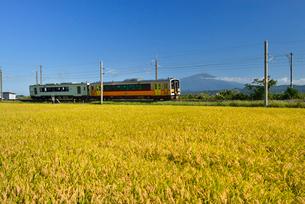 JR羽越本線と鳥海山と稲穂の写真素材 [FYI01719782]