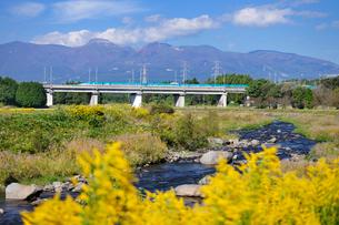 東北新幹線と那須岳と余笹川に咲くセイタカアワダチソウの写真素材 [FYI01719830]