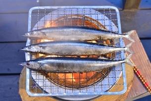 炭火で焼くサンマの塩焼きの写真素材 [FYI01719852]