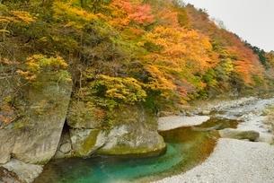 那珂川上流の紅葉の写真素材 [FYI01719974]