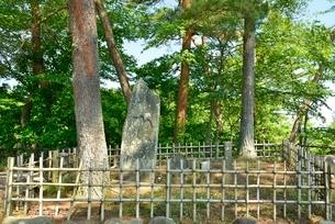西行戻しの松公園の写真素材 [FYI01720069]